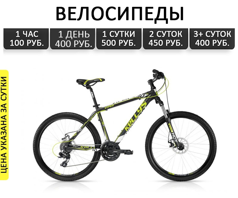 Прокат велосипедов в Геленджике на часы и сутки. Снять в аренду велосипед в Геленджике недорого.